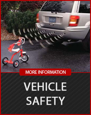 VEHICLE-SAFETY (1)